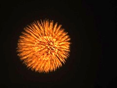 abekawafireworks2011-6.jpg