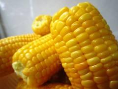 boiledcorn.jpg