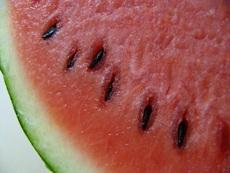cutwatermelon.JPG
