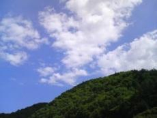 findayinjun2008.jpg