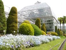 higashiyamabotanicalbardenconservatory2.JPG