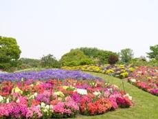 higashiyamabotanicalgarden.JPG