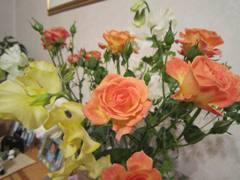 momsbirthday2011.jpg