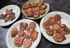 ricepowderandsoypowdercookies.jpg