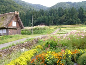 shirakawago3.JPG