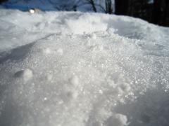 snow02022012.jpg