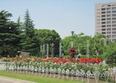 tsurumapark2014.jpg